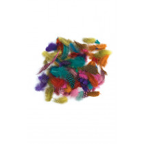 Coloured Freckled Feathers 28G