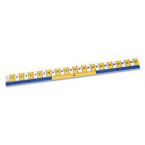 Ruler, Early Learning