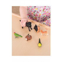 Pet Animal Set