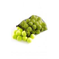 Training Quality Tennis Balls and Bag 48pk