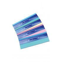 Coloured Eye Level Reading Ruler 10pk